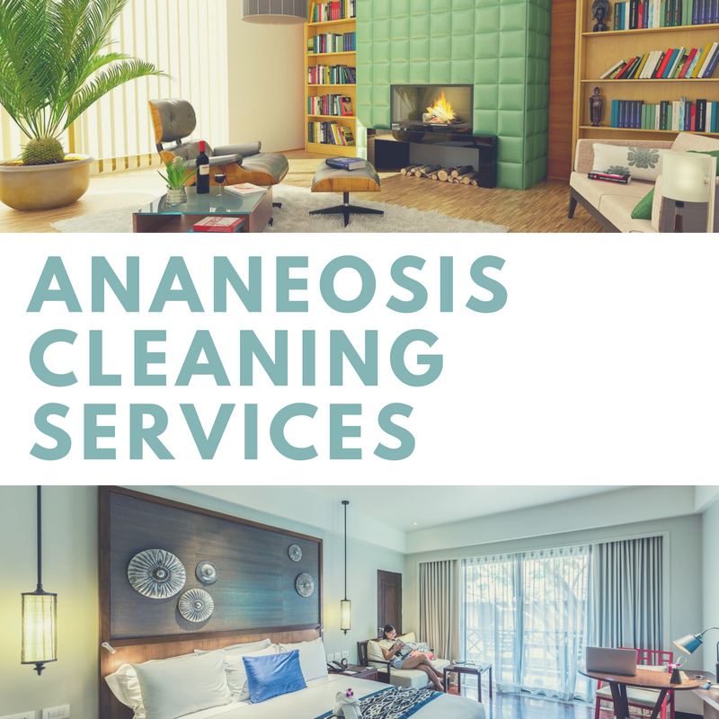 Ananeosis Group Chicago - Painting and Cleaning Services in ...